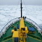 antarctica, kate mccombie, melbourne, photographer,